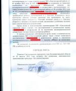 ГРАЖДАНСКОЕ, 12.10.10, апелляционное определение по восстанволению в родительских правах л.5