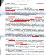 130211, решение суда о признании права на метеринский капитал л.1