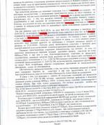 131008, решение суда о взыскании денег по расписке_Страница_4